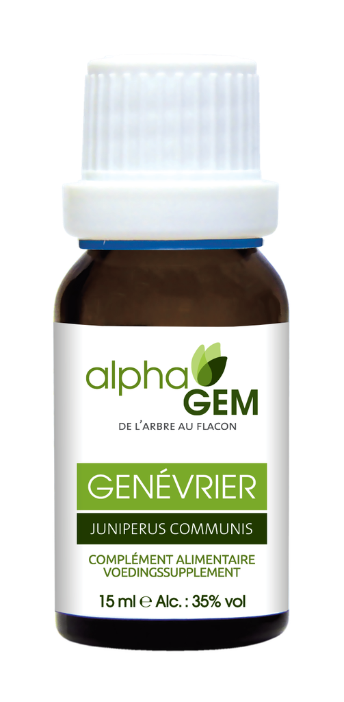 Genévrier (Juniperus Communis) 15ml Bio