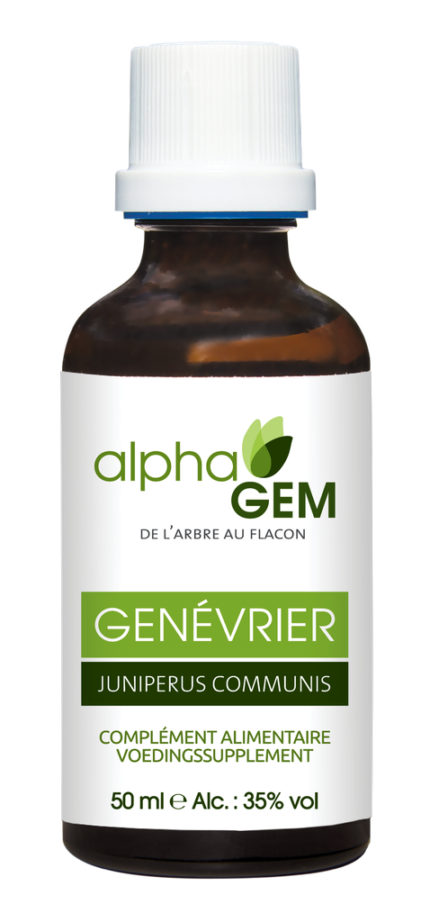 Genévrier (Juniperus Communis) 50ml Bio